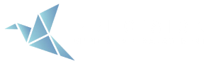 Precision Spine & Pain Management